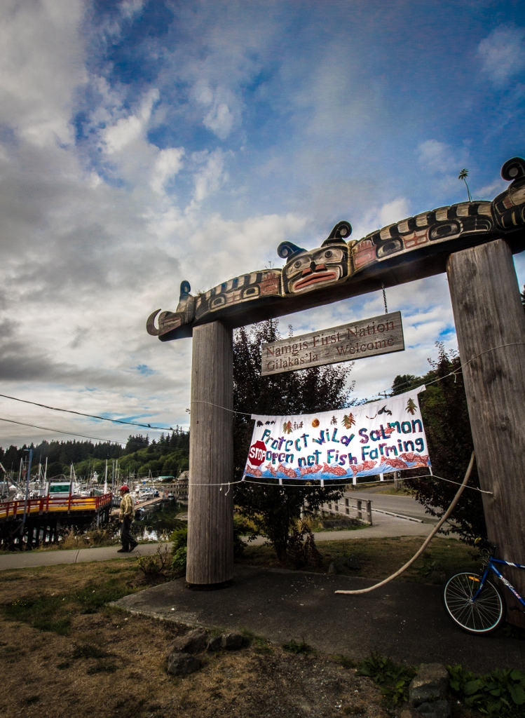 "Alert Bay, banner, ""Protect wild salmon. STOP open net fish farming"""