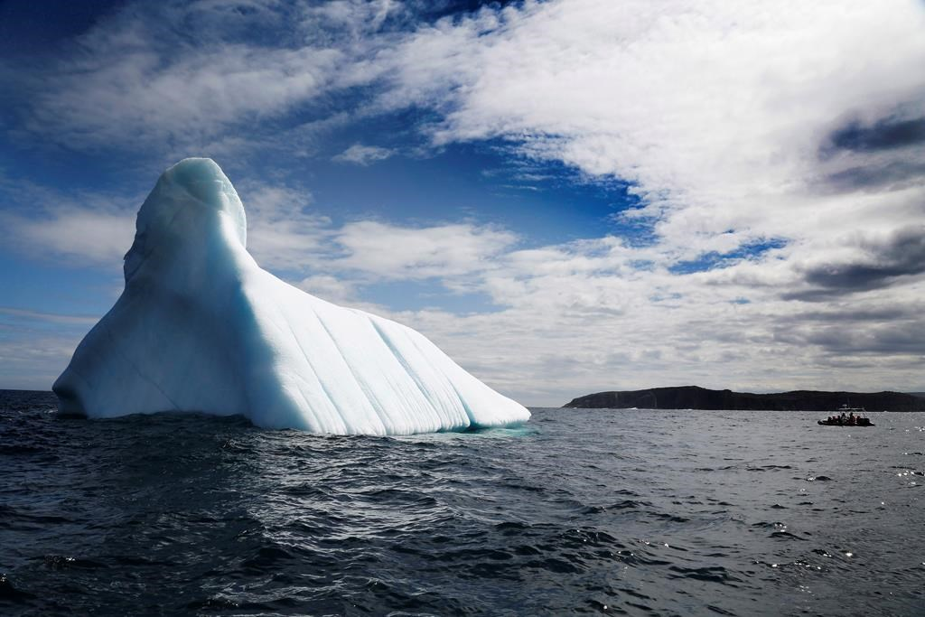 Newfoundland iceberg tours draw more visitors as climate warms: tour operator