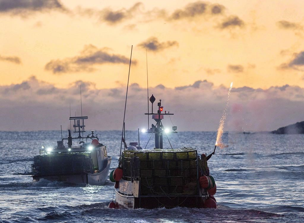 Canada joins global pact to stop illegal fishing trade, plans more