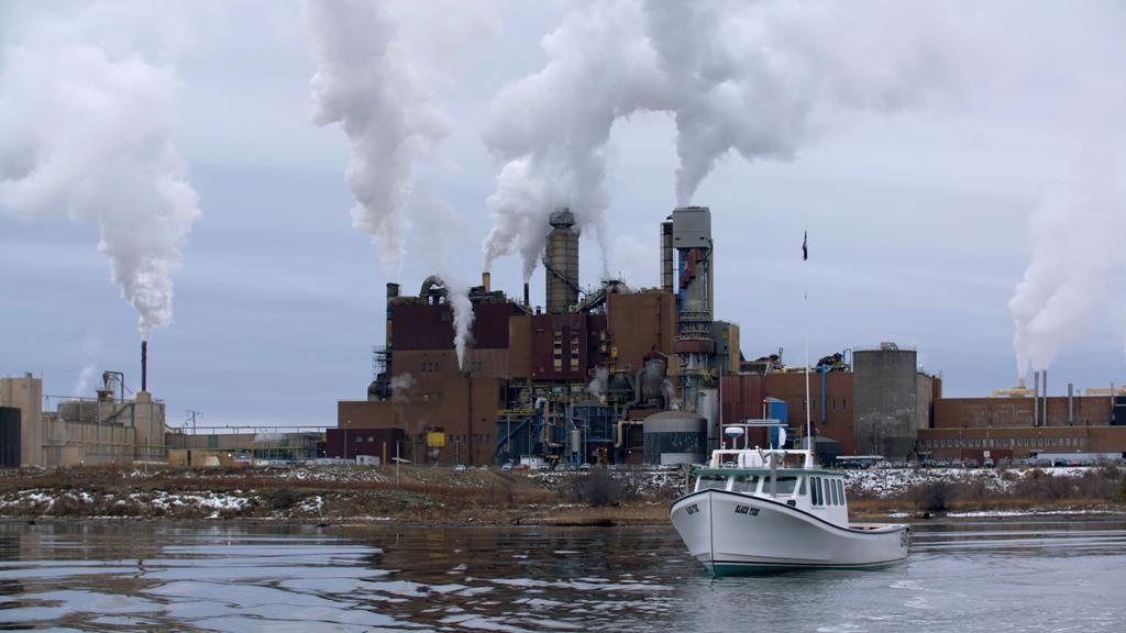 Battle over Nova Scotia pulp mill's future reflects wider Canadian