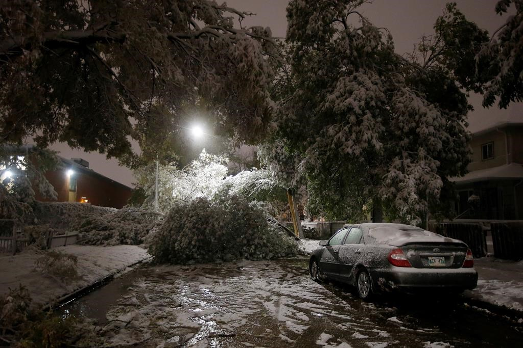The Weather Network predicts long, cold, messy winter