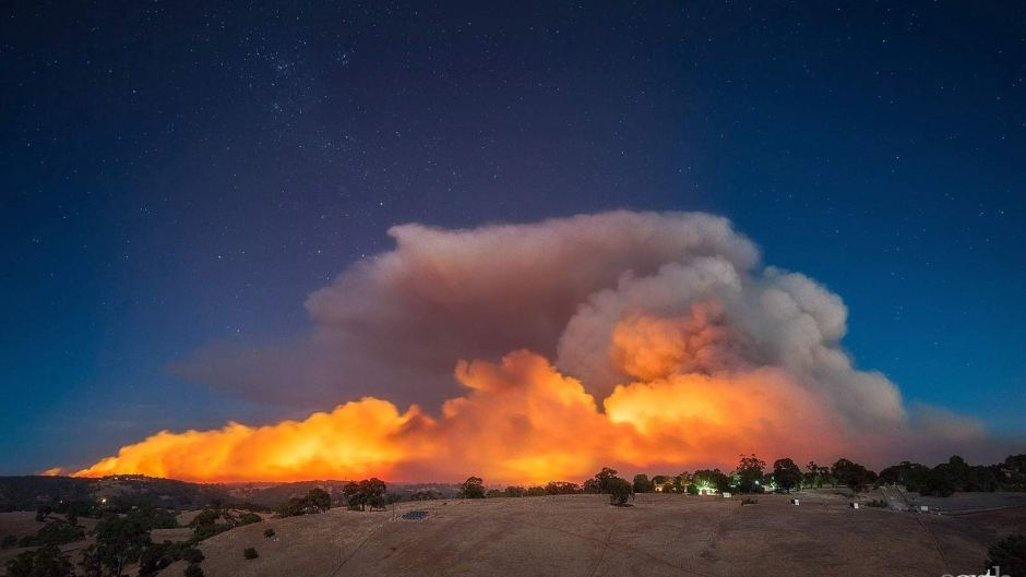 Forest fire in Australia - Australian Broadcasting Corporation