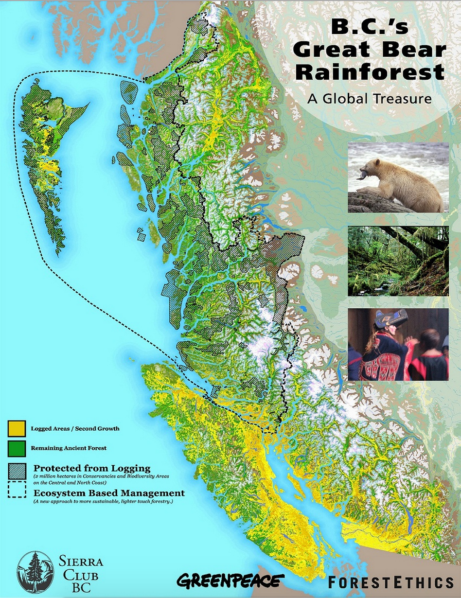 Great Bear Rainforest, Andy Wright, Greenpeace protests, B.C. rainforest, timber industry, B.C. forestry, coastal temperate rainforest, spirit bear