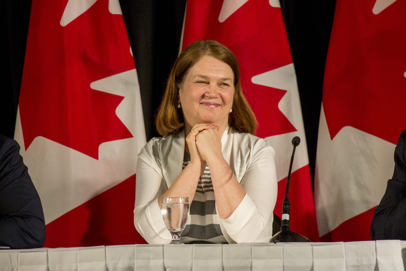 Jane Philpott, Liberals, Winnipeg, 2016