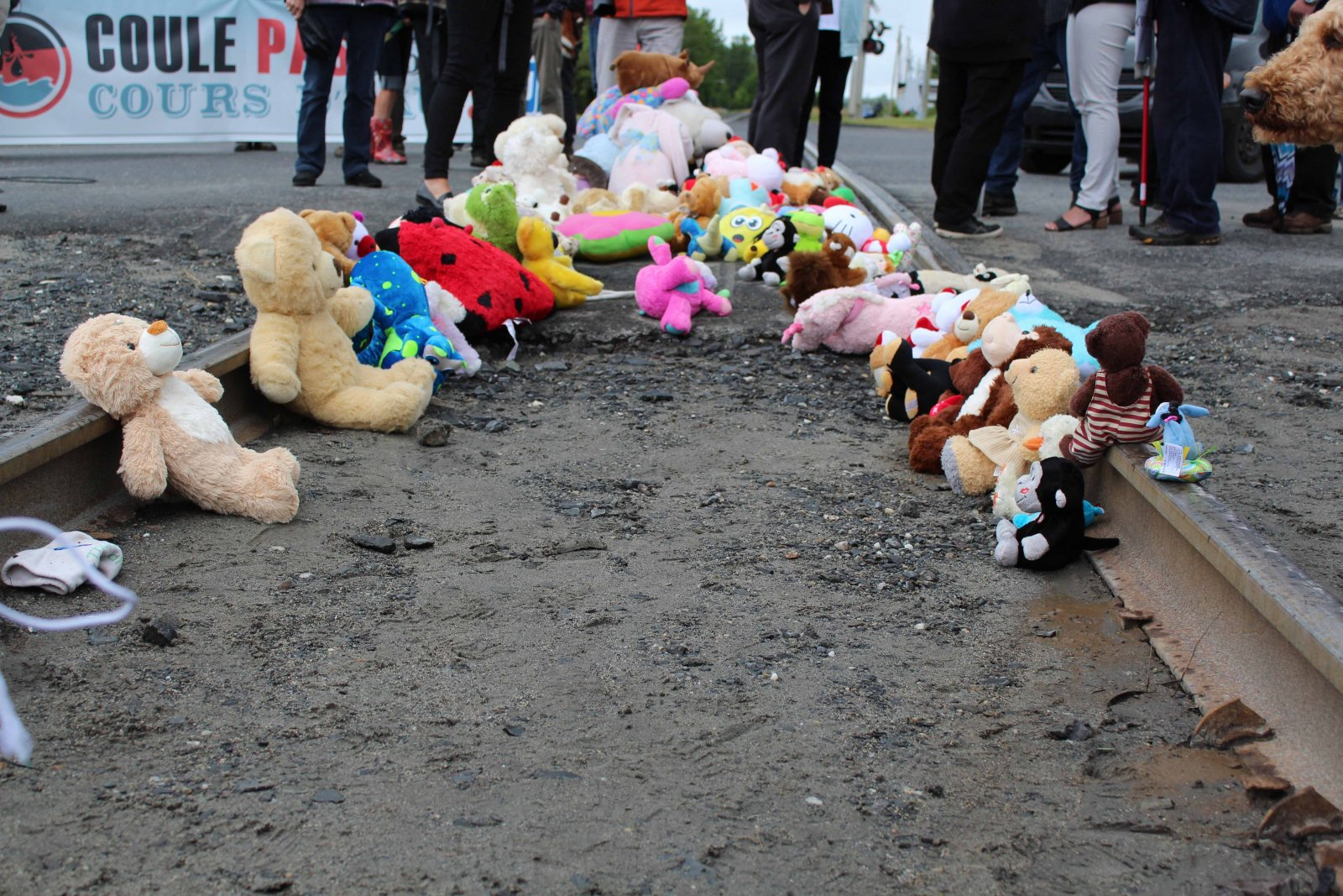 Lac-Mégantic, stuffed animals, railway tracks, oil, explosion, aftermath