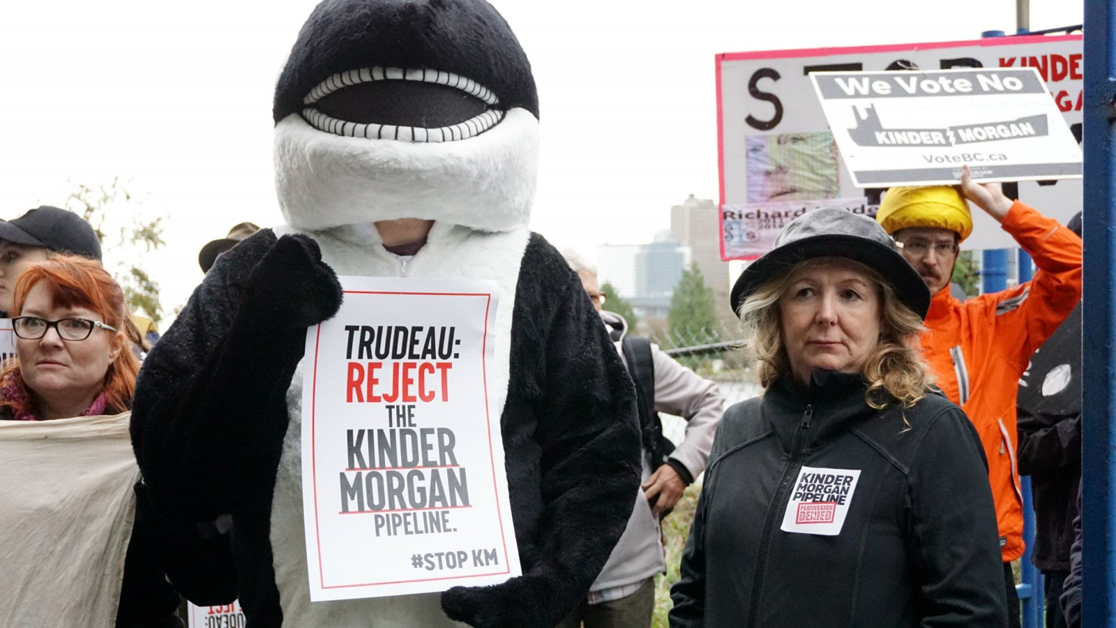 Karen Mahon, Stand, Kinder Morgan, Trans Mountain expansion, Southern resident killer whale