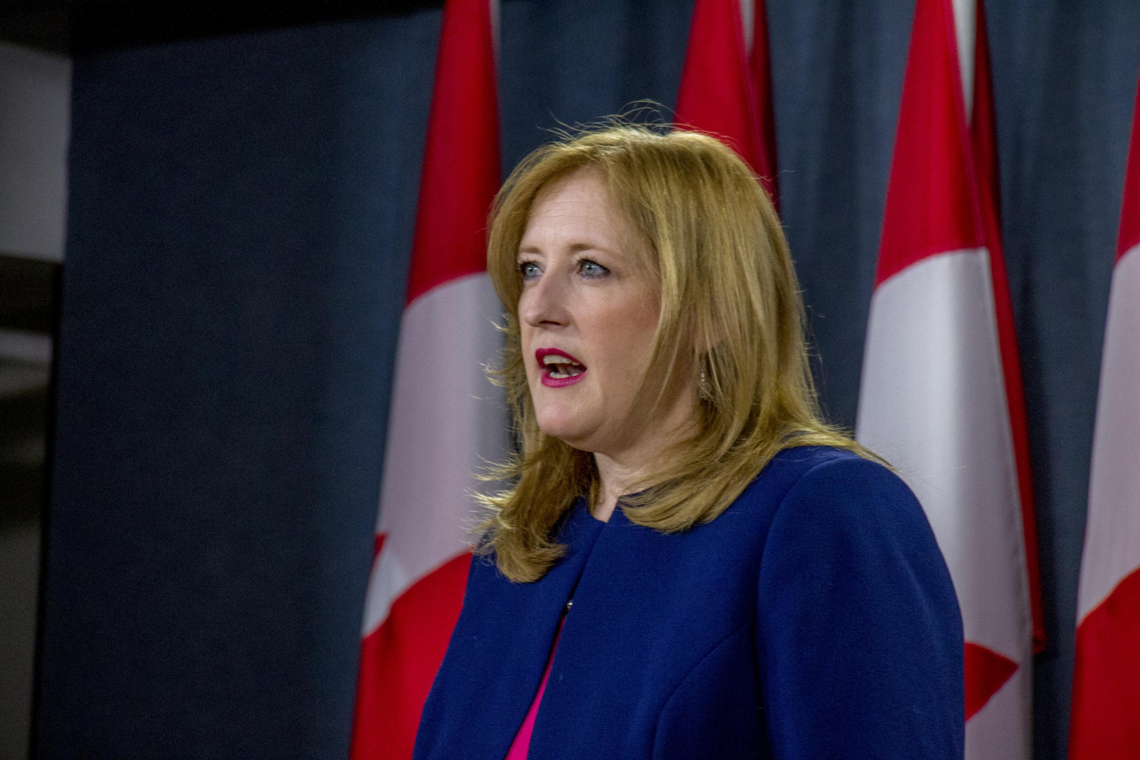 Lisa Raitt, Conservative Party of Canada, Ottawa, Canada