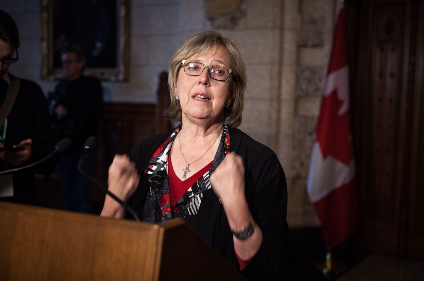 Elizabeth May, electoral reform, parliament hill