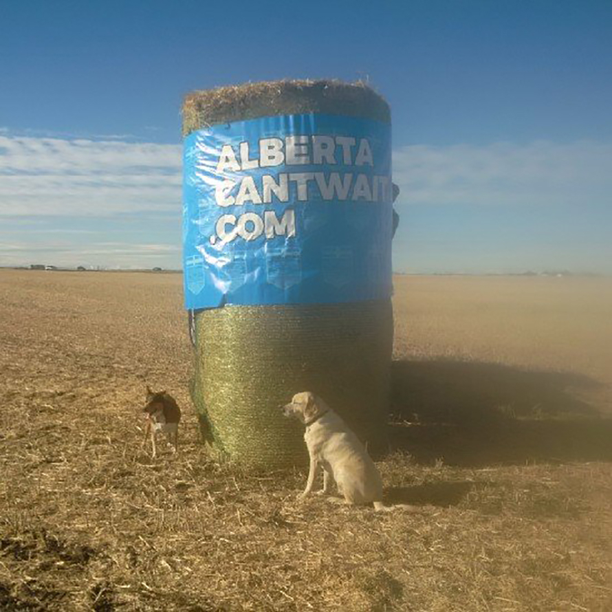 An Alberta Can't Wait poster wrapped around a hay bale. Photo by Alberta Can't Wait.