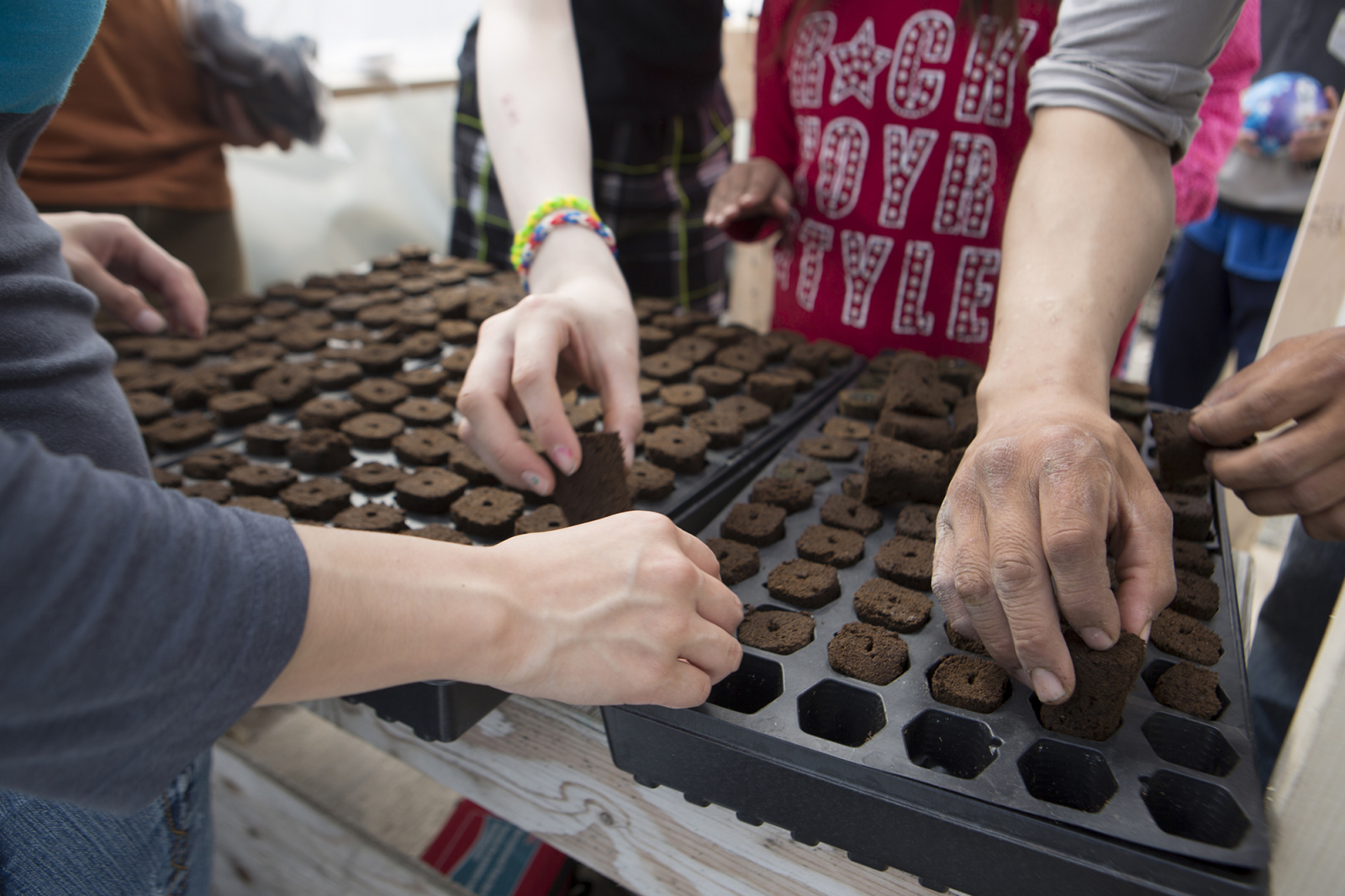 Planting seeds in the Growing North greenhouse in Naujaat, Nunavut. Photo by Growing North