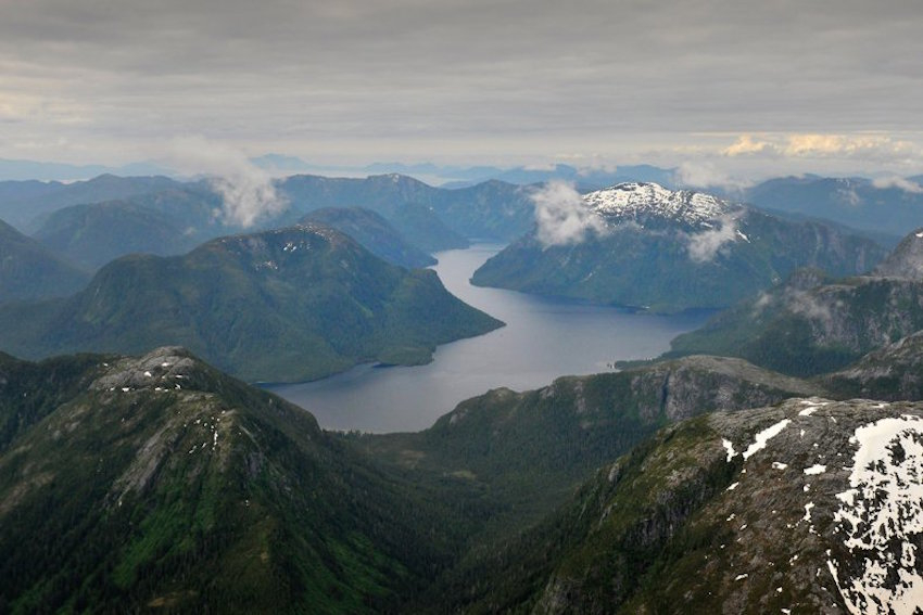 Great Bear Rainforest aerial. Photo by Andrew S. Wright.