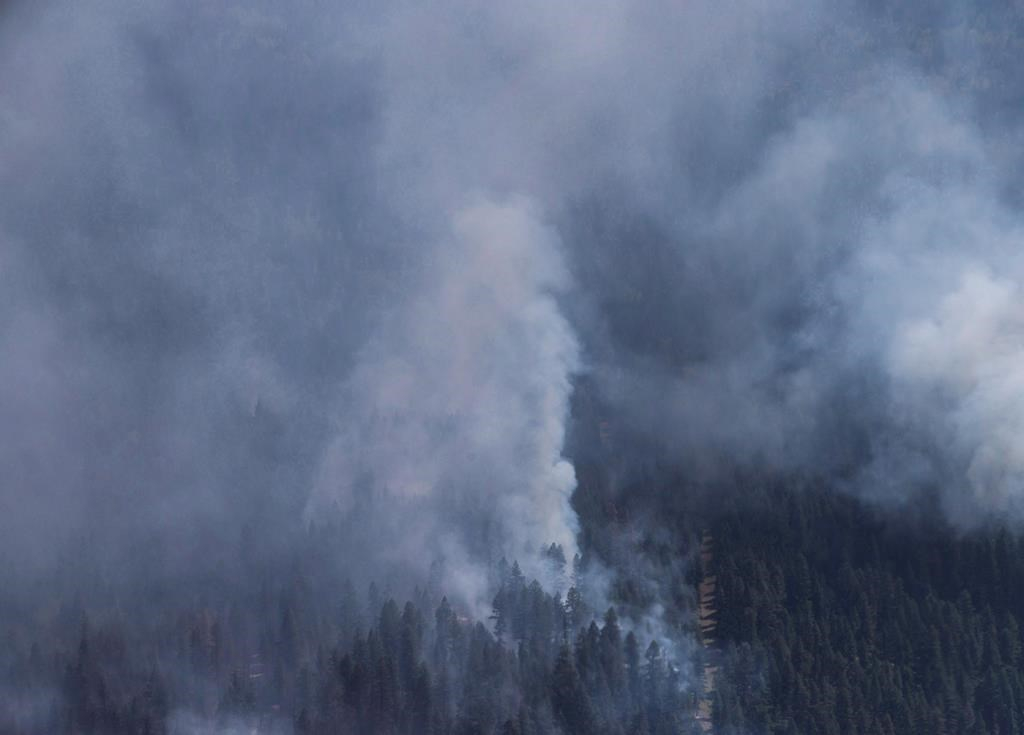 wildfire, seen, Canadian Forces Chinook helicopter, Williams Lake, B.C.,