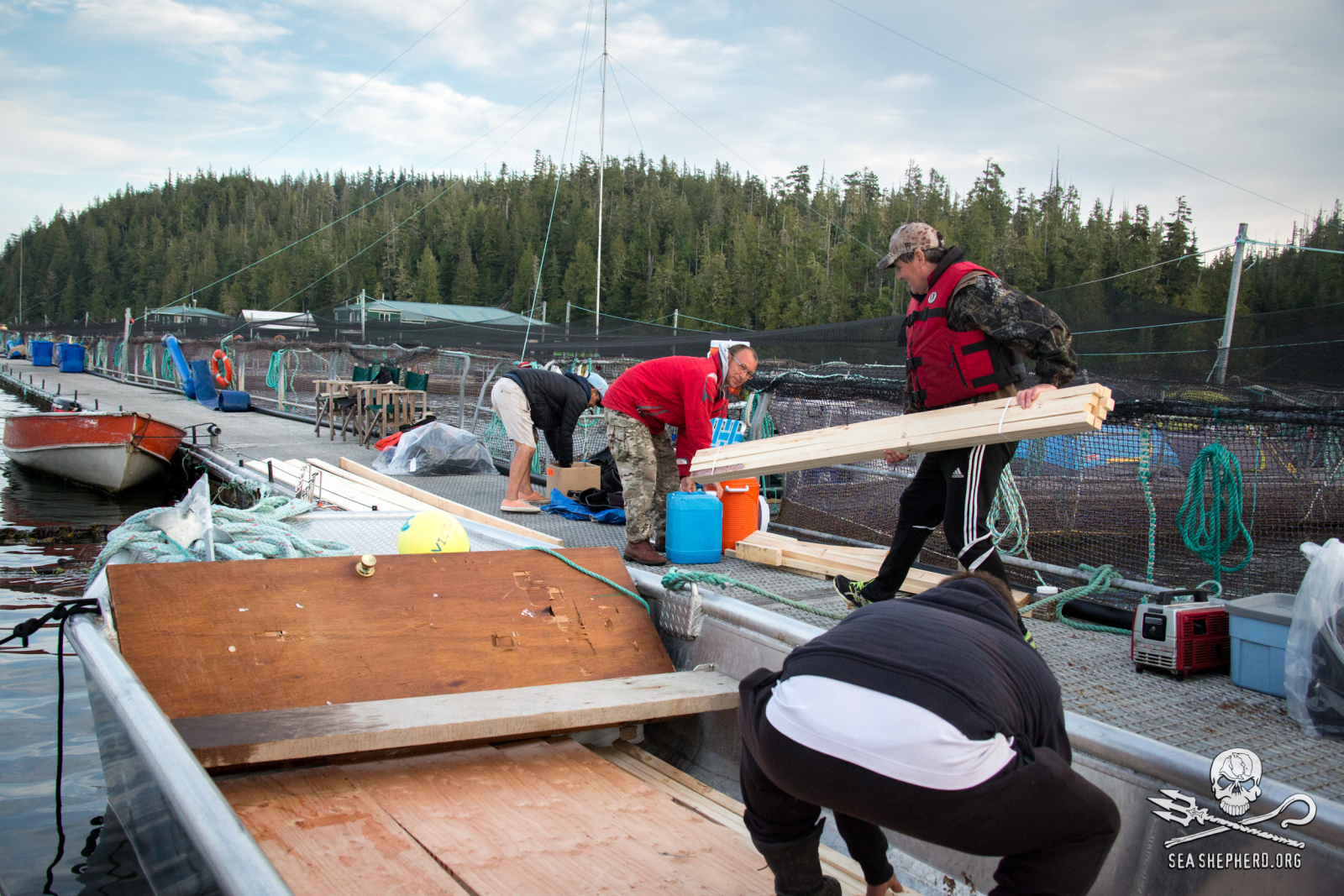 Marine Harvest, fish farm, occupation, Swanson Island, salmon