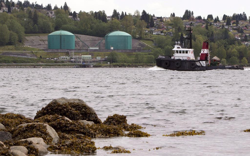 tug boat, Kinder Morgan Marine Terminal, Burrard Intlet, Vancouver,