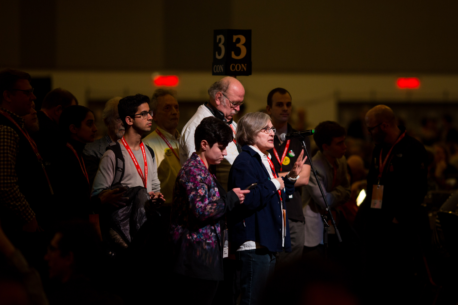 Delegates respond to resolutions at the NDP's national convention on Feb. 16, 2018. Photo by Alex Tétreault