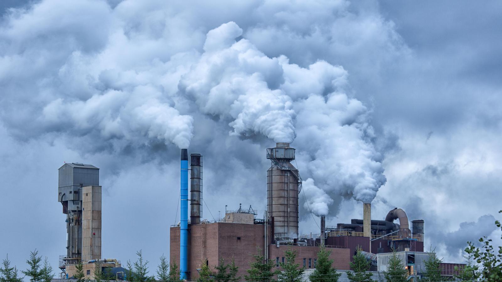 Uproar in Nova Scotia over plan to dump pulp effluent into