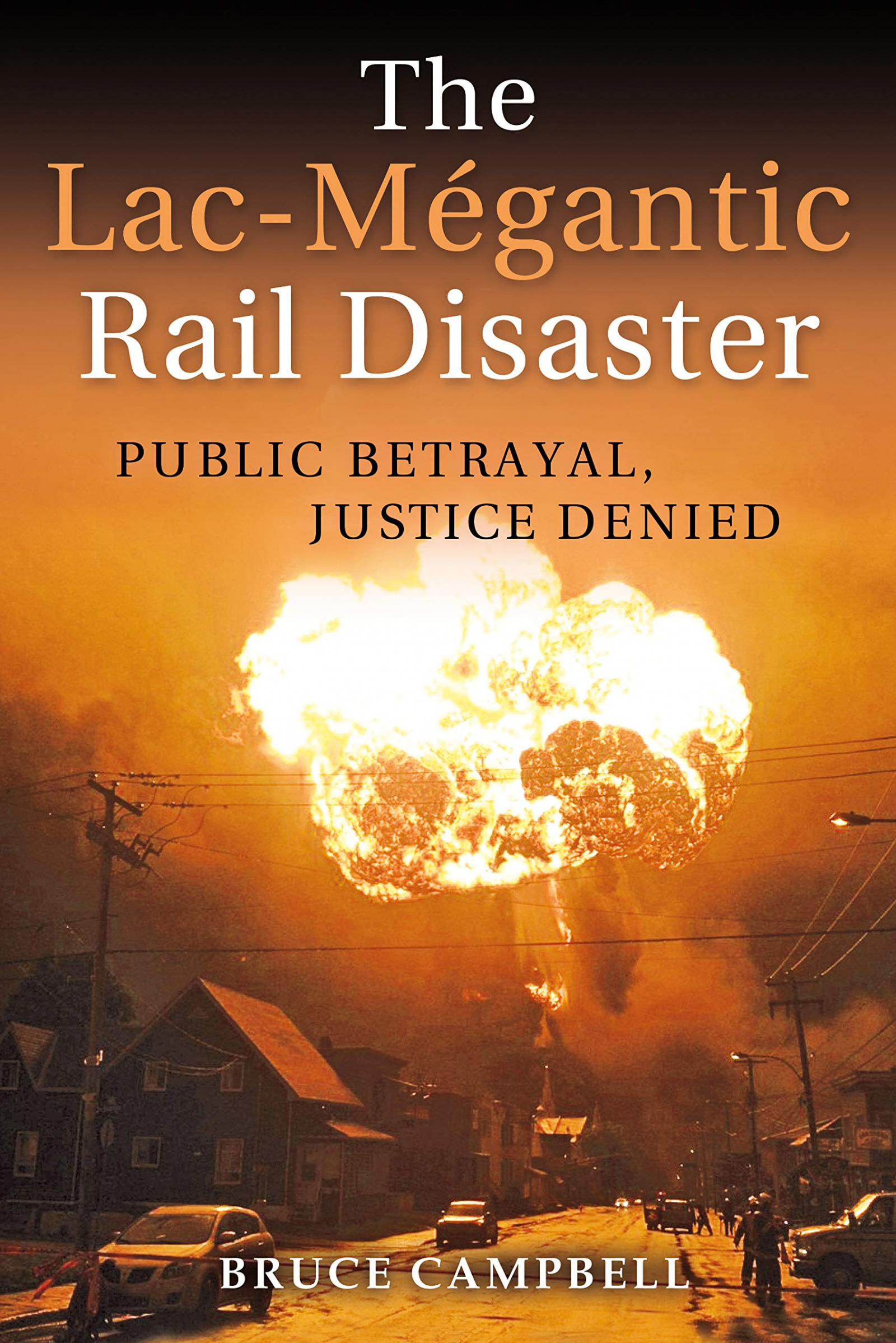 Public Betrayal, Justice Denied. Book cover.