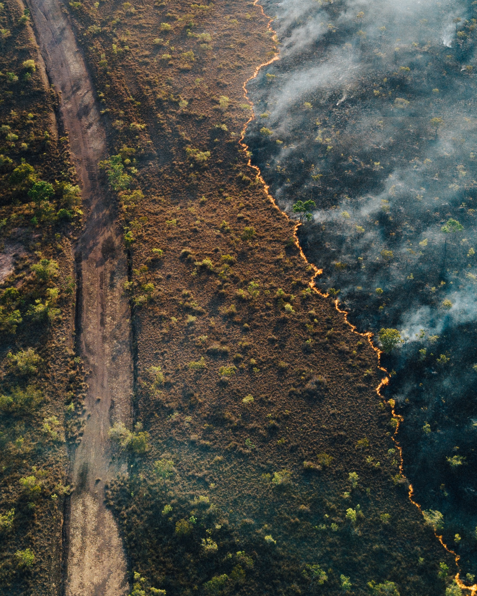 Politics and people fuelling Amazon rainforest fires