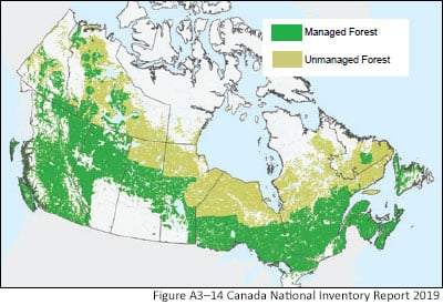 Map of Canada managed forests.