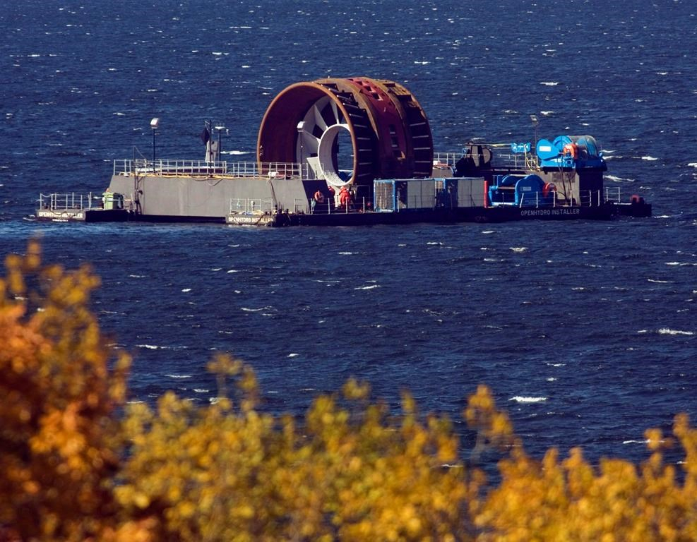 an environmental report about the tidal power in the bay of fundy in nova scotia The nova scotia government and a company attempting to deploy two tidal turbines in the bay of fundy have joined forces to fight a move by a fishermen's association to block the venture.
