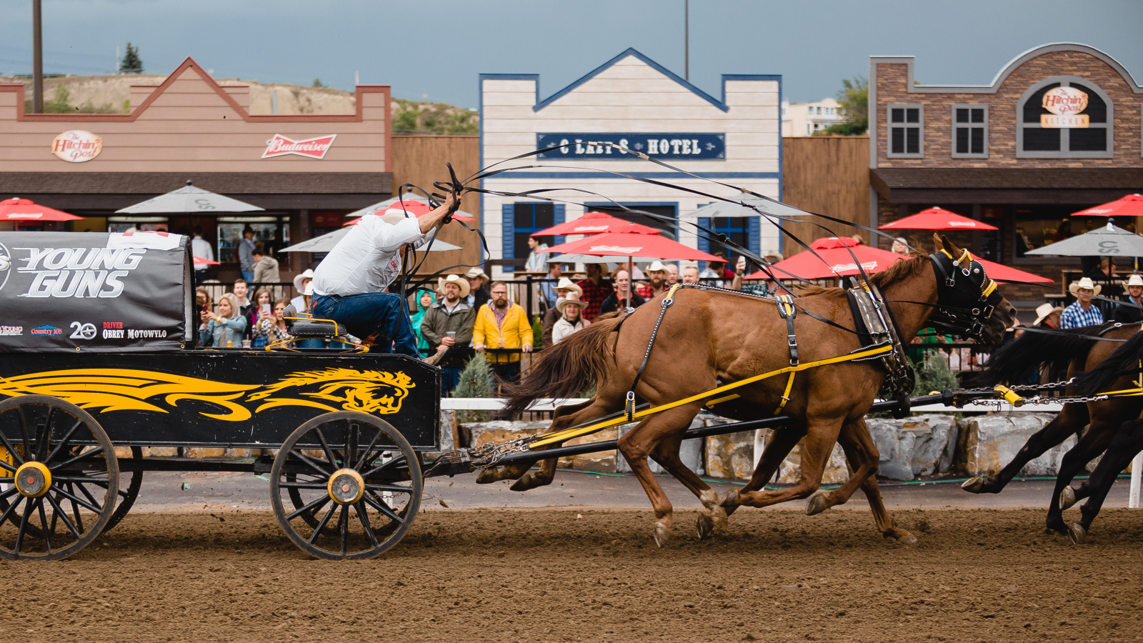 Every summer, there's a chance the Calgary Stampede's