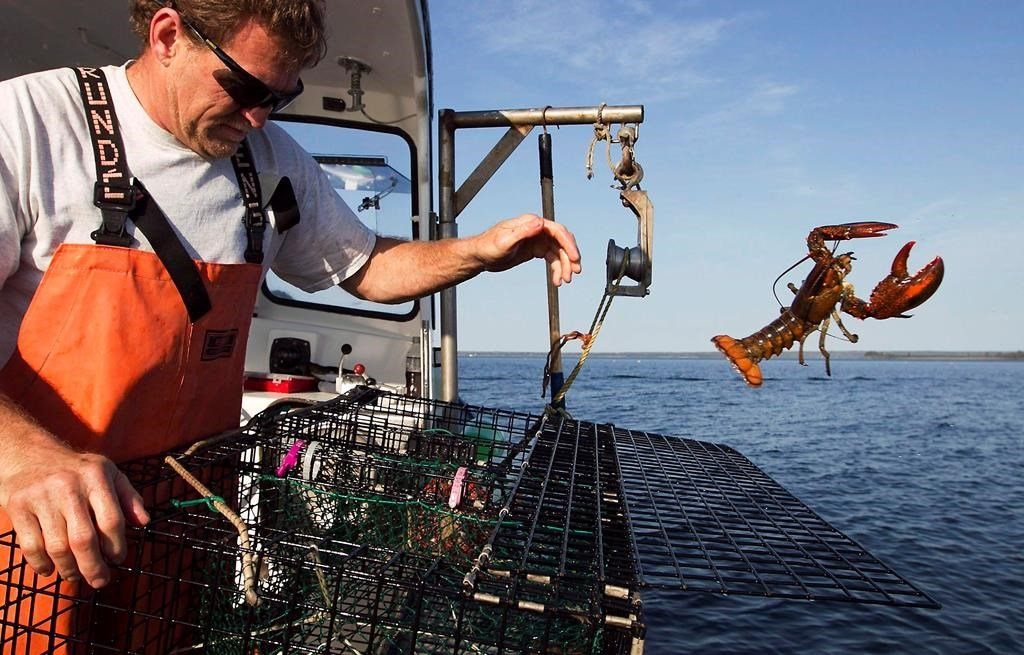 Sweden digs in on proposal to ban lobsters from europe for Public fishing access near me