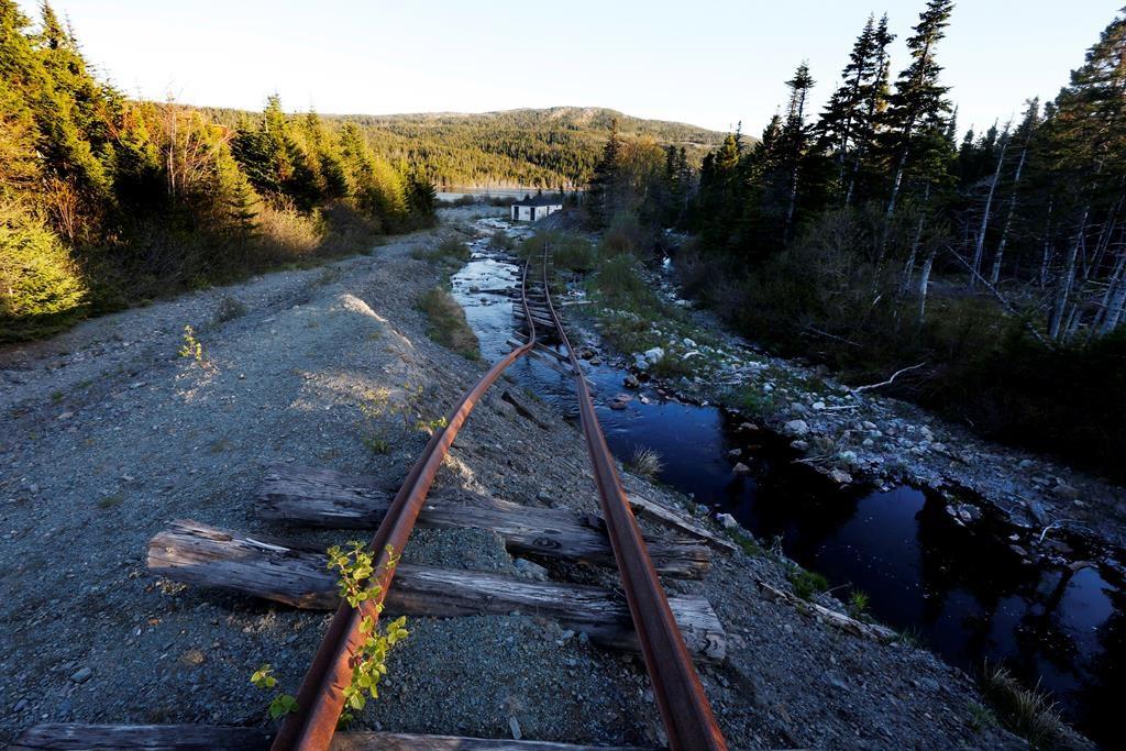 Adventurers flock to abandoned Newfoundland amusement park