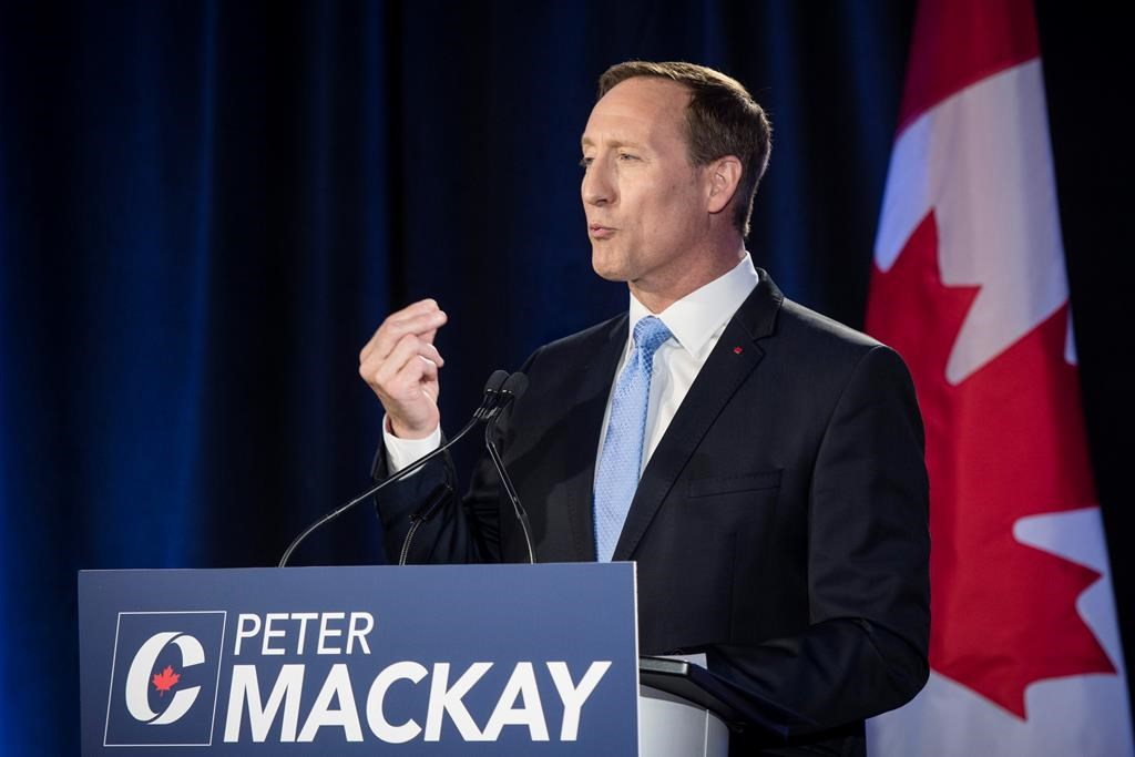 MacKay a front-runner for Tory leadership race, but half