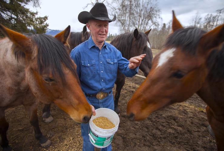 Rancher Gene Allen feeding his horses near Hazelton, B.C. - photo by Mychaylo Prystupa