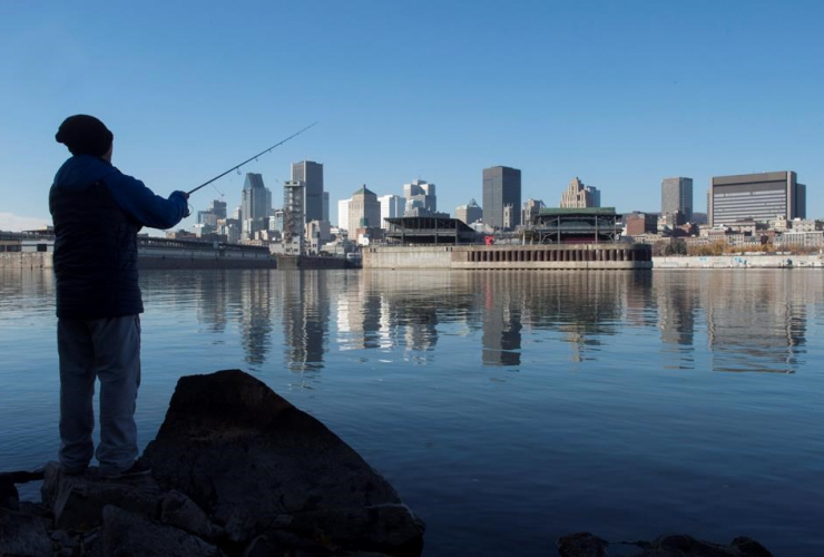 Montreal, Island of Montreal, real estate, housing prices
