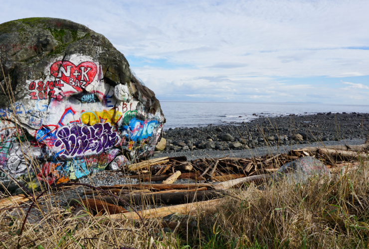 Big Rock, Campbell River, Vancouver Island, British Columbia, tourism, salmon, graffiti, First Nations legend