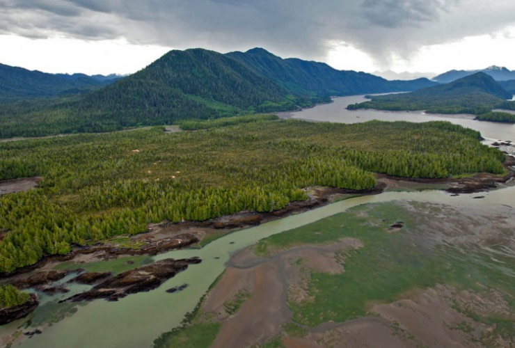 Lelu Island, Prince Rupert, Petronas, Pacific NorthWest LNG, Brian Huntington, Ocean Ecology, LNG in B.C.