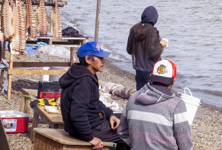 Whaling camp, Dempster Highway, Northwest Territories, Tuktoyaktuk, Dave Bidini