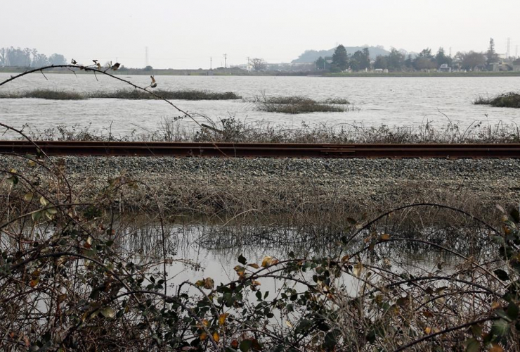 In this Jan. 17, 2017, photo, a field remains flooded near Novato, Calif. California is a leader in fighting climate change. But experts say this winter's storms show how much work even California must do to prepare for sea rise. Photo by Eric Risberg/AP.