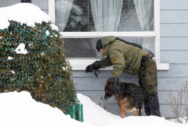 A police officer and his dog look for evidence near a home in the area of a Quebec City mosque on Monday Jan. 30, 2017. Photo by Paul Chiasson/CP.