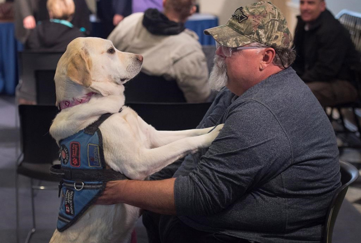 Medric Cousineau, a retired air force navigator who was awarded the Star of Courage, sits with Thai, his service dog who helps him cope with his post-traumatic stress disorder, at a news conference at the legislature in Halifax on Friday, March 24, 2017.