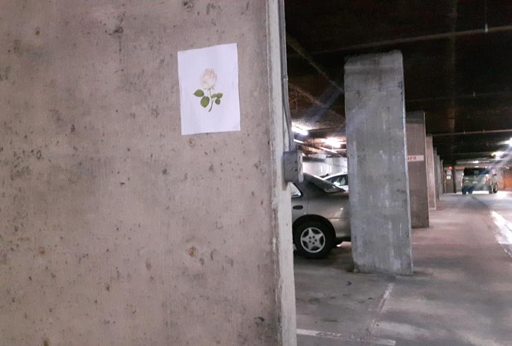Burnaby condo parking garage. Photo by Steve Ferguson.