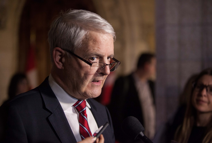 Marc Garneau, airline security, Transport Canada, airplanes
