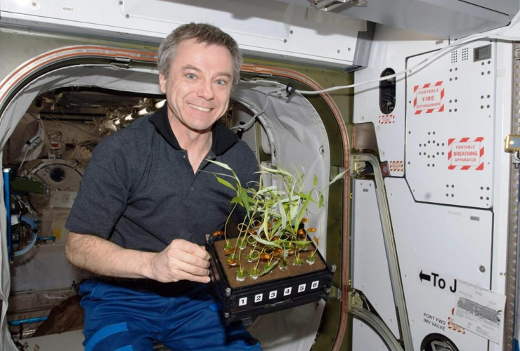 Canadian astronaut Bob Thirsk holds plants while on board the International Space Station in this handout photo.