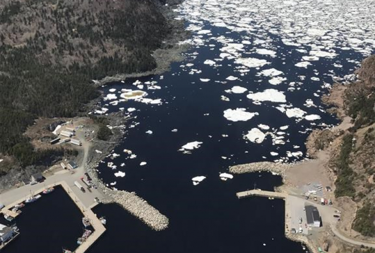 The port of La Scie, N.L. is shown in a handout photo taken from the CCGS Amundsen helicopter on June 8, 2017.