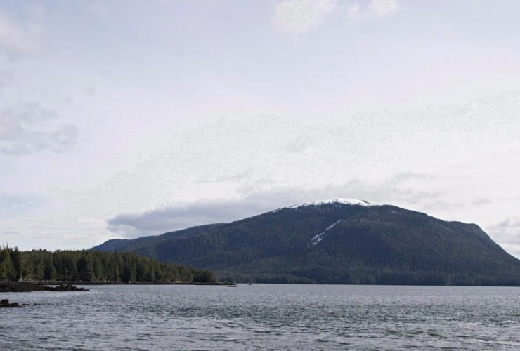 Lelu Island, near Prince Rupert, B.C., was the proposed site of the Pacific Northwest LNG project, backed by the Malaysian energy company Petronas. File photo by The Canadian Press/Robin Rowland