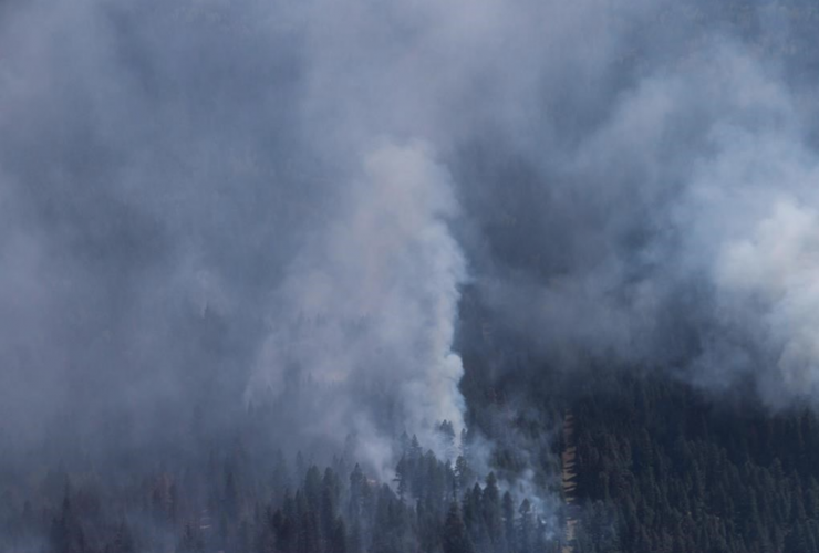 Smoke, B.C. wildfire, wildfire, forest fire, natural disaster