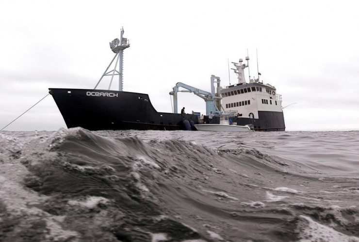 research vessel, Ocearch, great white sharks, Atlantic Ocean, Chatham,
