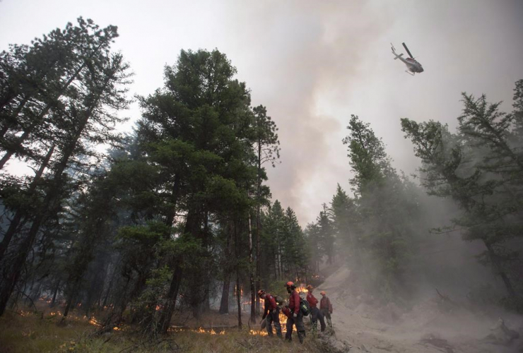 helicopter, water, fire guard line,  B.C. Wildfire Service firefighters, Finlay Creek wildfire, Peachland,