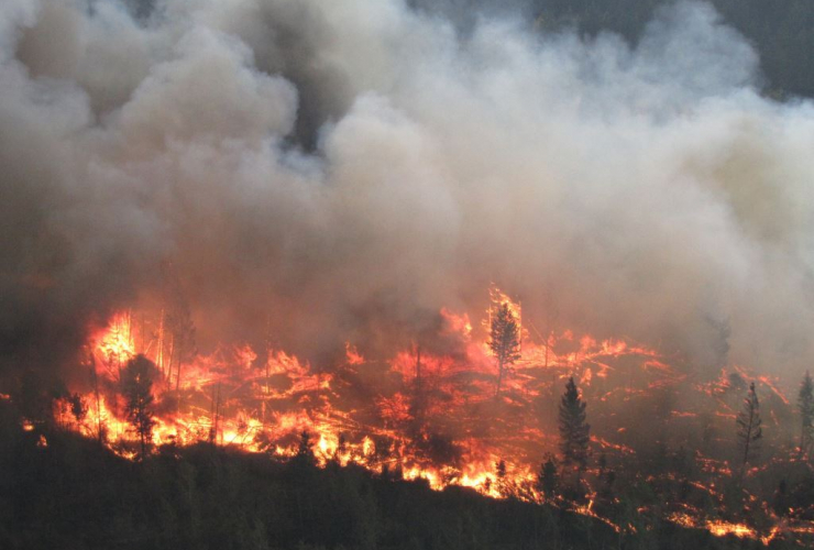 A wildfire near Bald Mountain burning this summer in B.C. Photo by BC Wildfire Service.