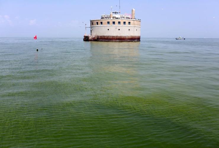 Toledo, Ohio, algae bloom, Lake Erie, Curtice,