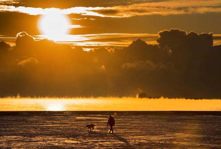 man, walks, dog, snow covered beach, cargo ship, fog,  Lake Ontario, Toronto,