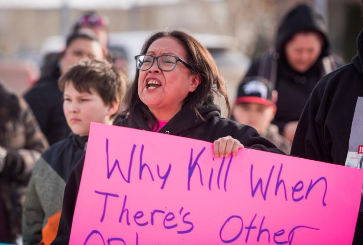 Colten Boushie, Debbie Baptiste, demonstrators, courthouse, North Battleford,