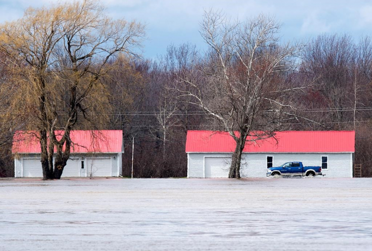 pickup truck, water-covered road, St. John River, Maugerville,