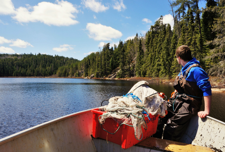 Experimental Lakes Area, Department of Fisheries and Oceans, Kenora, International Institute for Sustainable Development